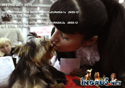 "INTERNATIONAL DOG SHOW RKF-FCI ""EURASIA"""