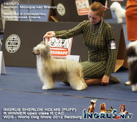 World Dog Show 2012 Salzburg.